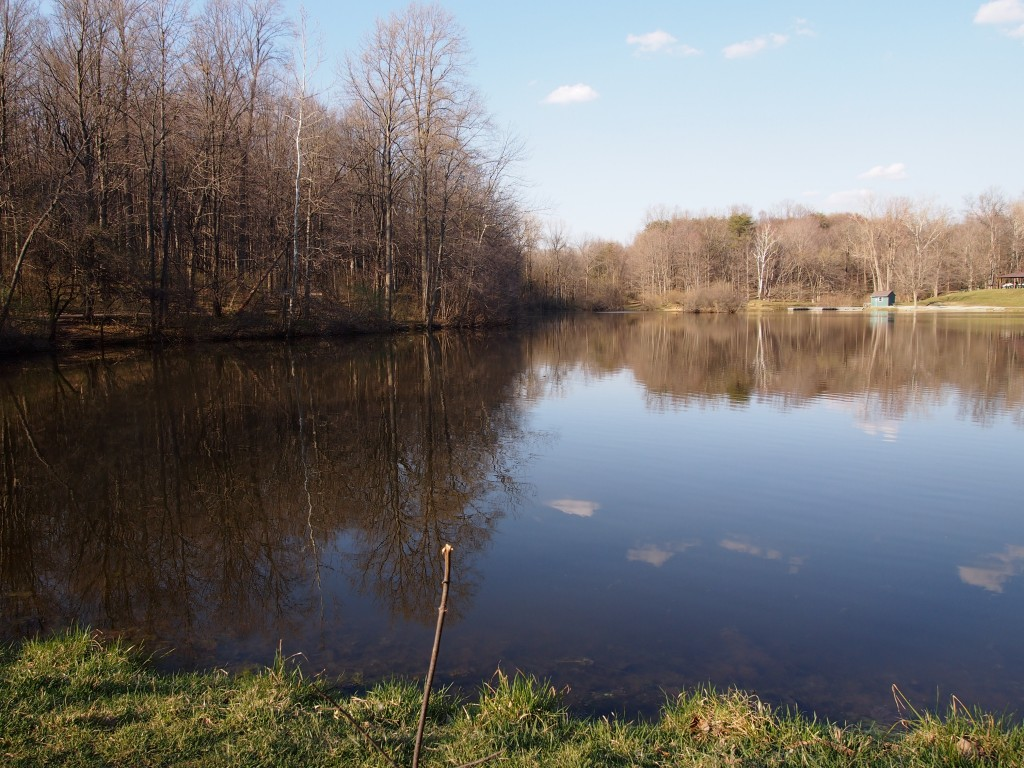 Lilly Lake, Indianapolis April 18, 2014