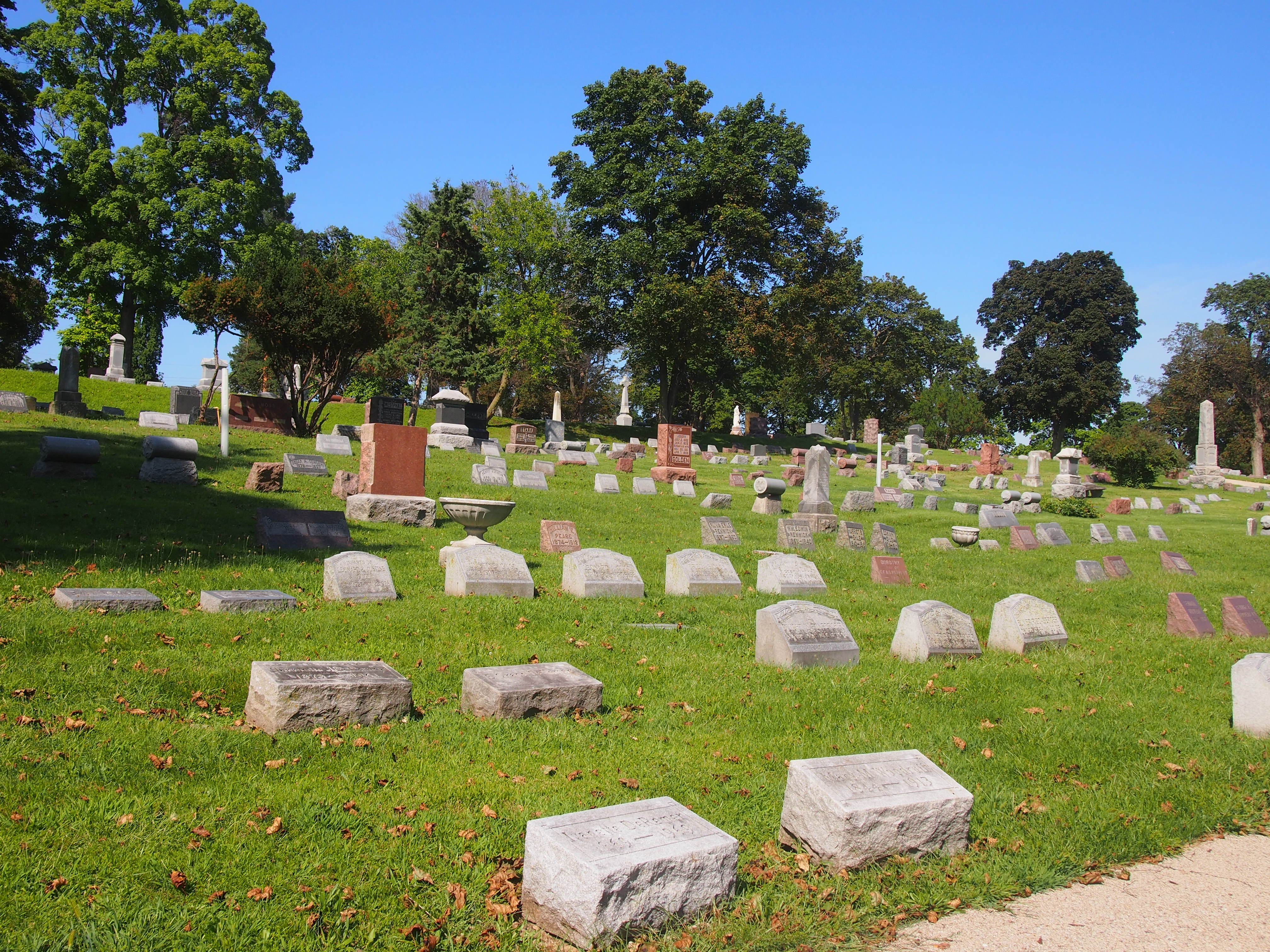 Bluff City Cemetery, August 2014