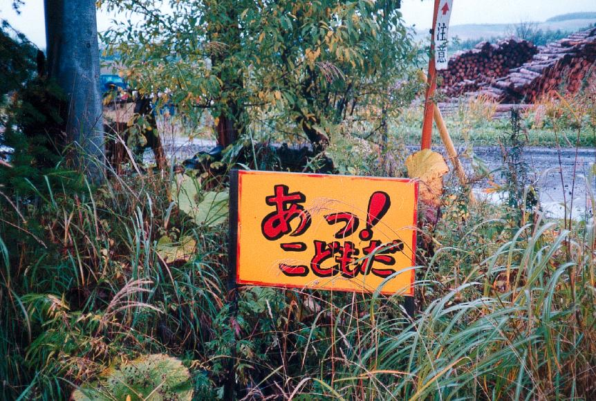 Children at Play Sign, Hokkaido, fall 1993
