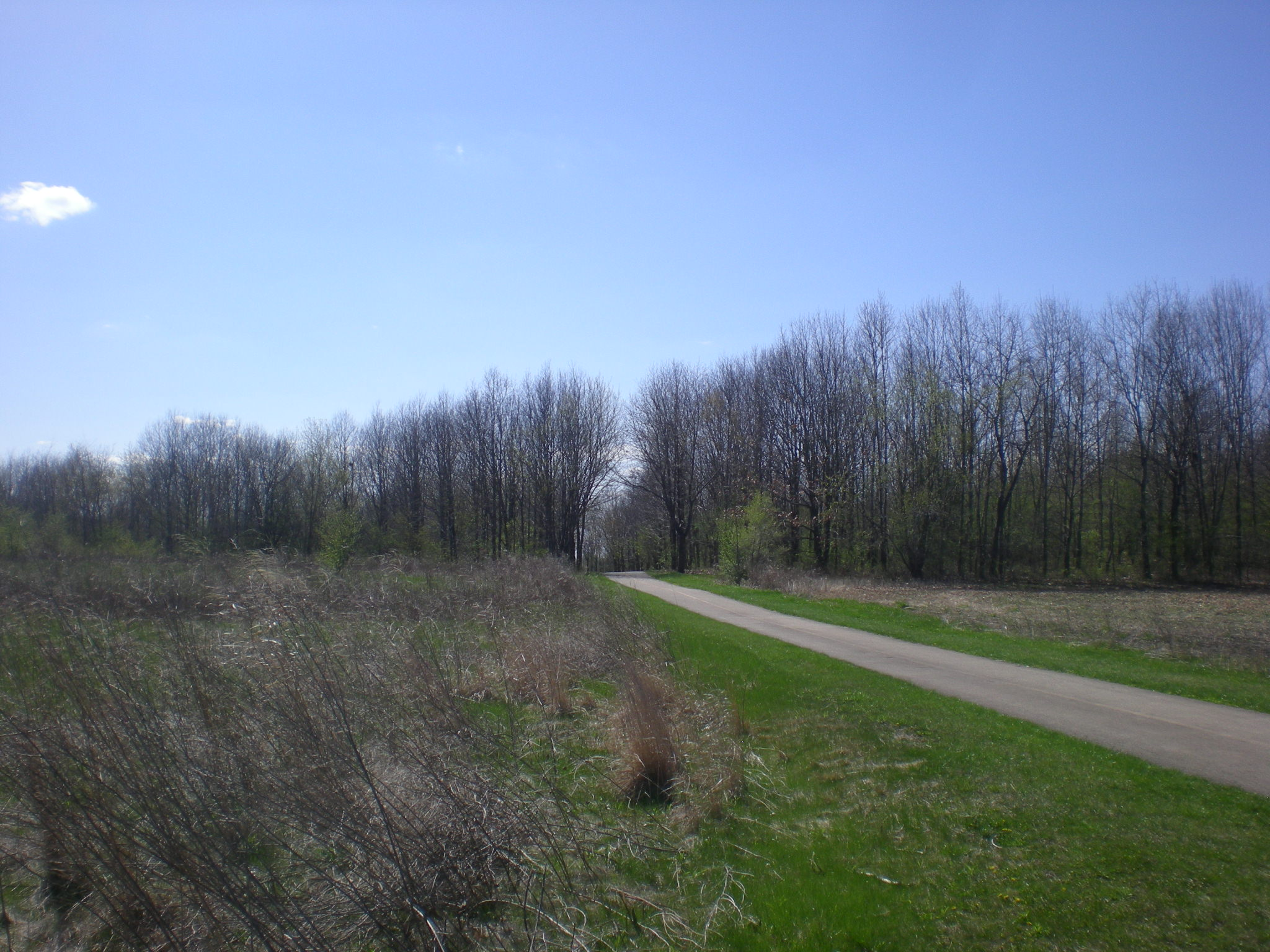 Poplar Creek, April 2015