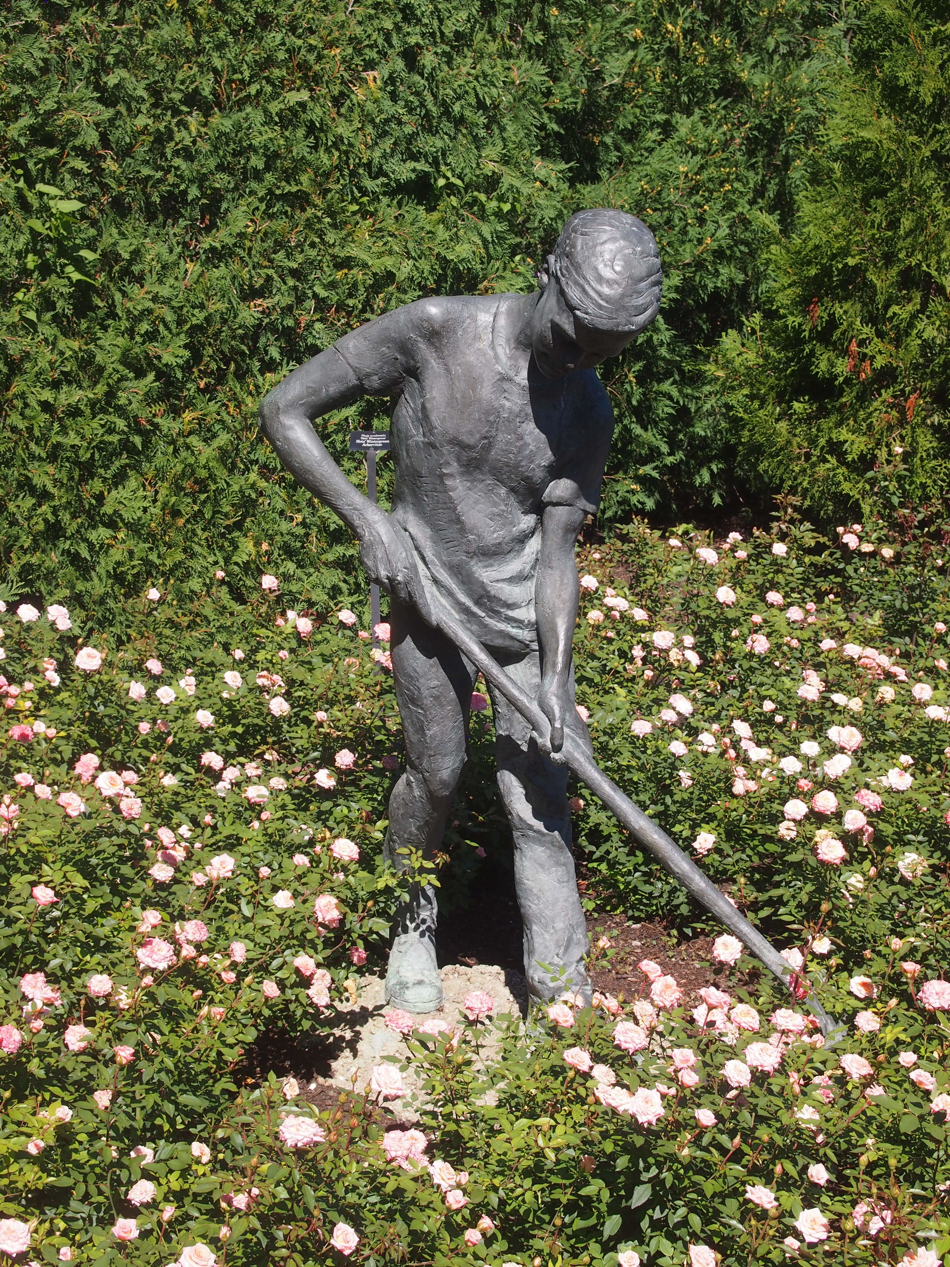 Chicago Botanic Garden - Boy Gardener - Margot Mcmahon