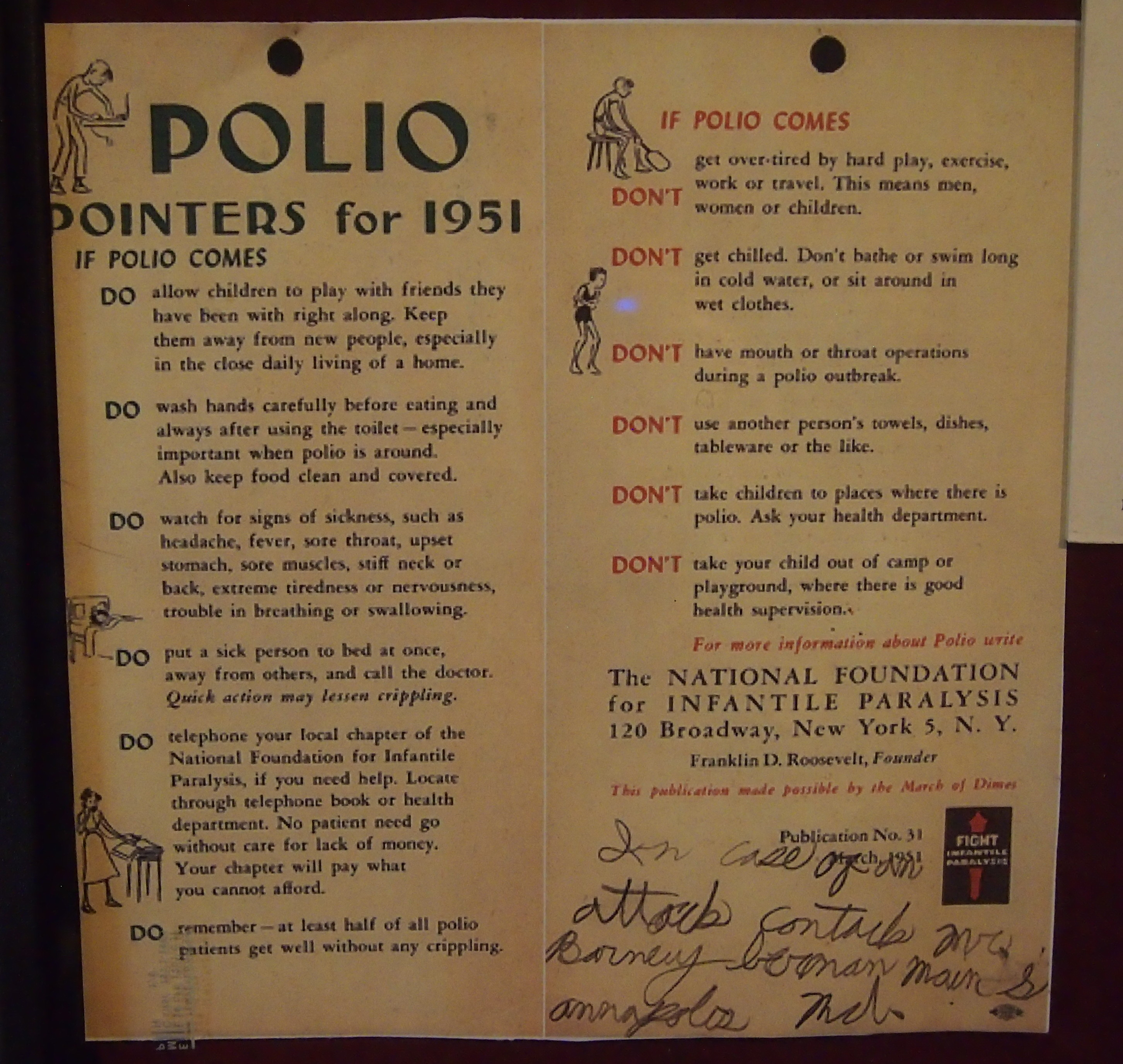 Polio Pamphlet 1951
